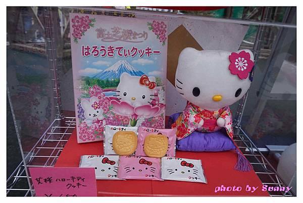 富士山芝櫻祭19.jpg