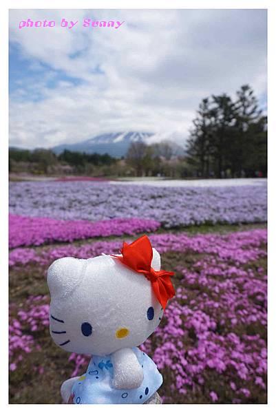 富士山芝櫻祭23.jpg