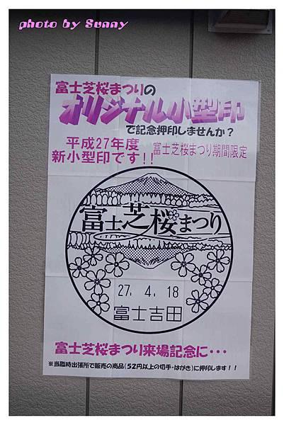 富士山芝櫻祭28.jpg