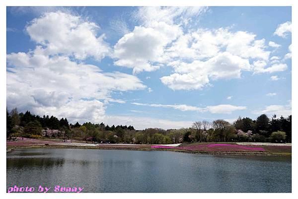 富士山芝櫻祭33.jpg