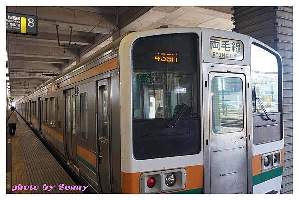 足利藤園3.jpg