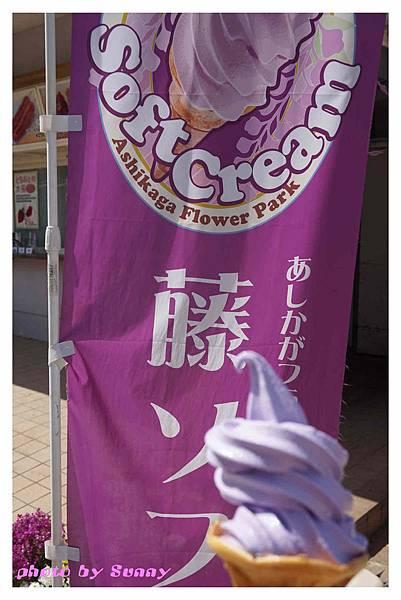 足利藤園43.jpg