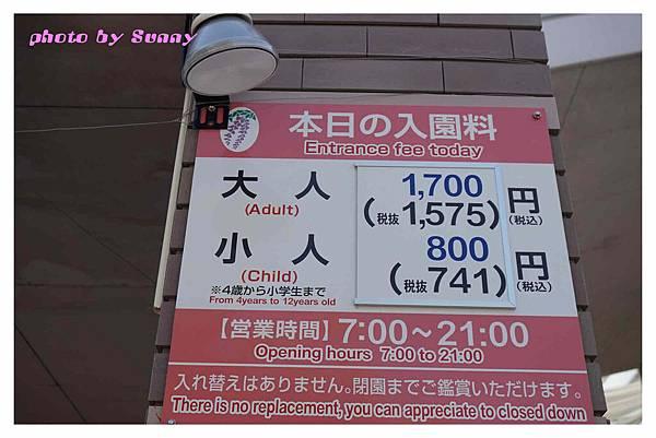 足利藤園47.jpg