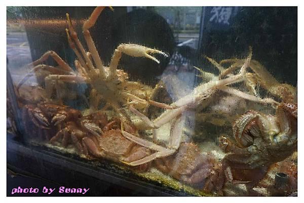 鼎膾北海道螃蟹22.jpg