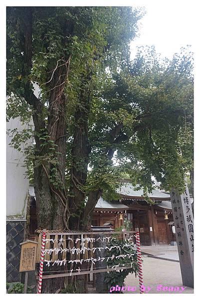 2015北九州自助-櫛田神社19.jpg