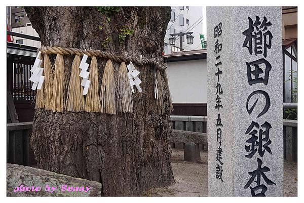 2015北九州自助-櫛田神社31.jpg