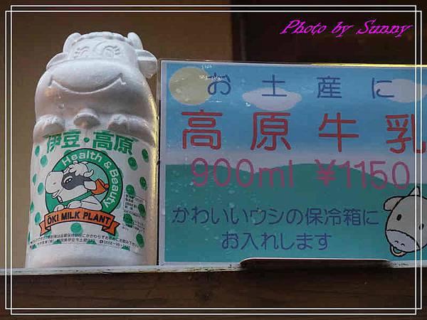 伊豆泰迪熊博物館60.jpg