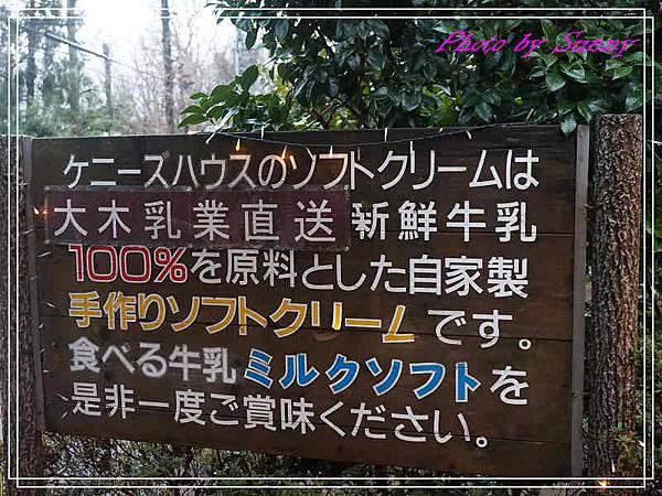 伊豆泰迪熊博物館61.jpg