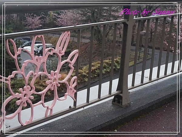 伊豆泰迪熊博物館65.jpg