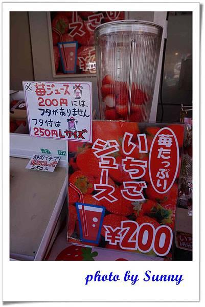 久能山東照宮64.jpg