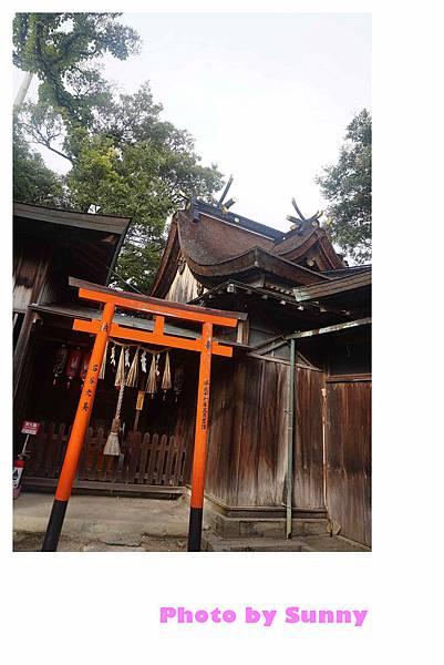 加太春日神社21.jpg