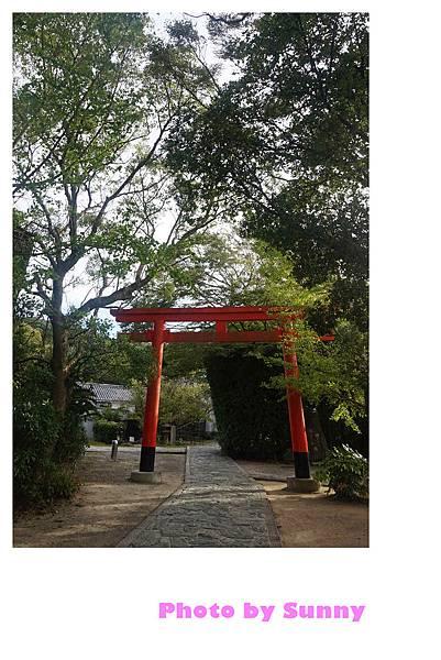 淡島神社16.jpg