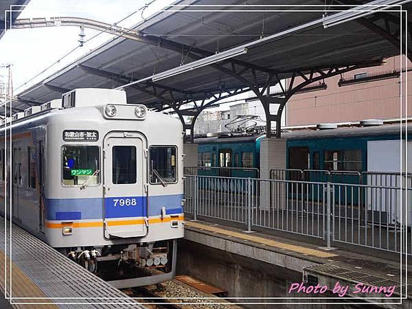 加太線吉慶鯛列車4.jpg