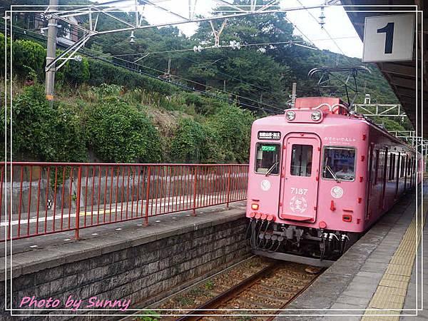 加太線吉慶鯛列車11.jpg