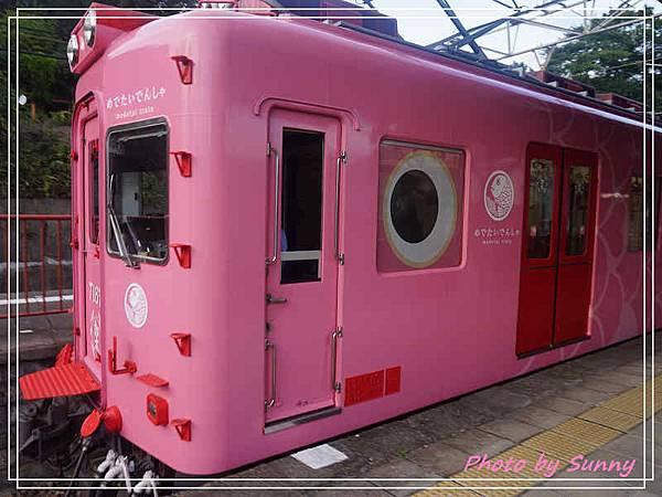 加太線吉慶鯛列車12.jpg
