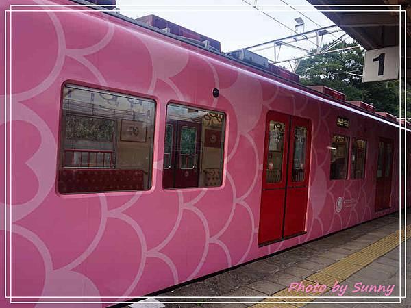 加太線吉慶鯛列車13.jpg