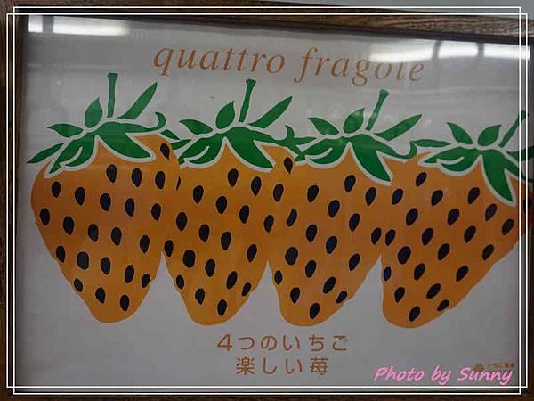 和歌山電鐵草莓列車3.jpg