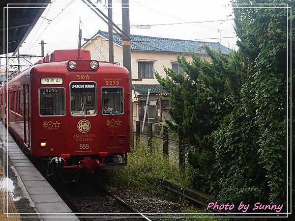 和歌山電鐵梅星列車1.jpg