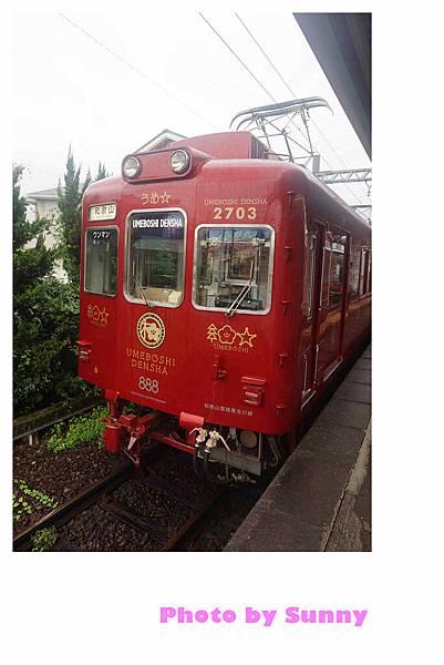 和歌山電鐵梅星列車22.jpg