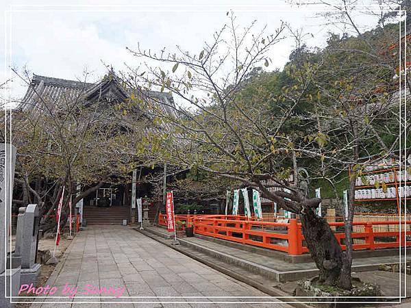 紀三井寺8.jpg