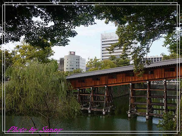 和歌山城4.jpg