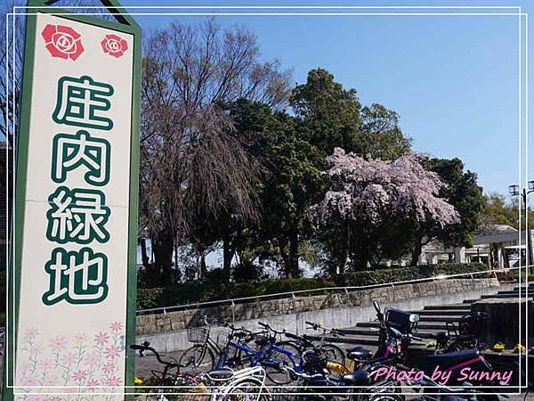 庄內綠地公園1.jpg