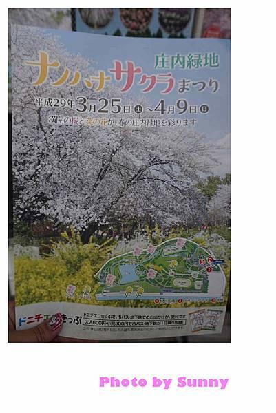 庄內綠地公園18.jpg