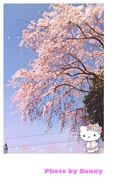 庄內綠地公園19.jpg