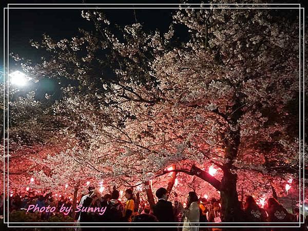 鶴舞公園1.jpg