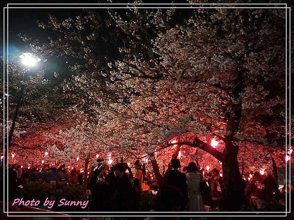 鶴舞公園2.jpg