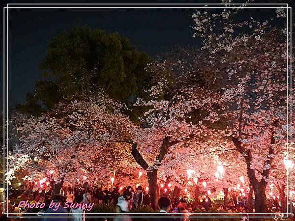 鶴舞公園3.jpg