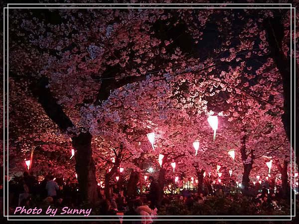 鶴舞公園4.jpg