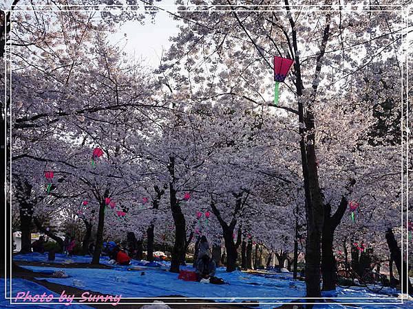 鶴舞公園7.jpg