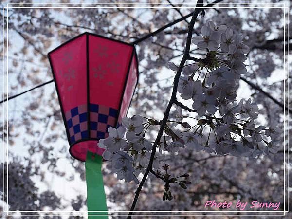 鶴舞公園9.jpg