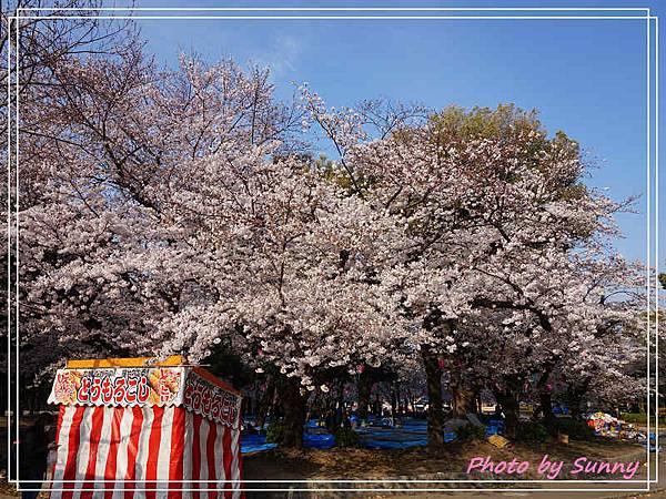 鶴舞公園17.jpg