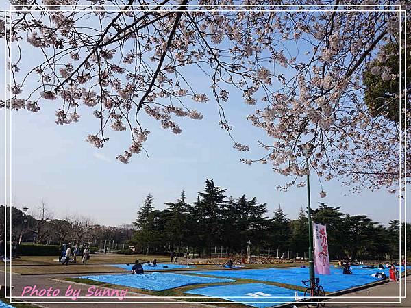 鶴舞公園24.jpg
