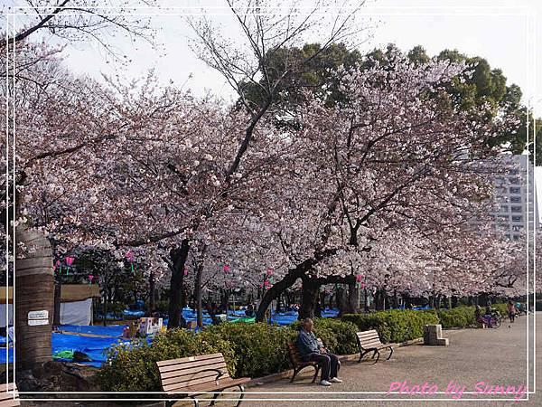 鶴舞公園23.jpg