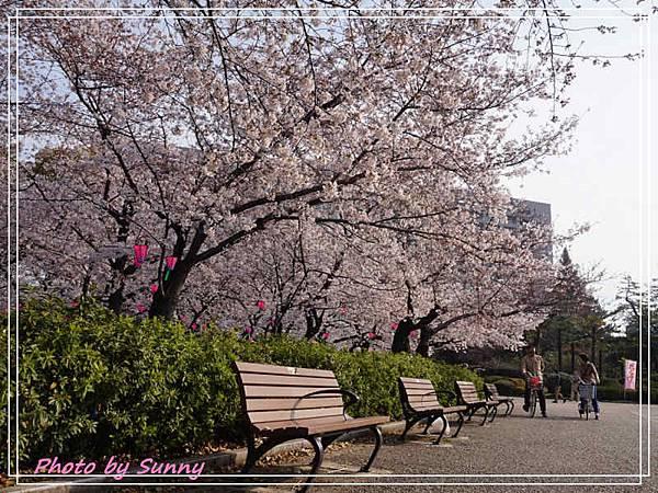 鶴舞公園25.jpg