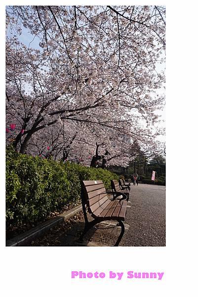 鶴舞公園33.jpg