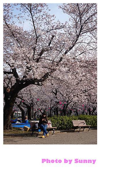 鶴舞公園34.jpg