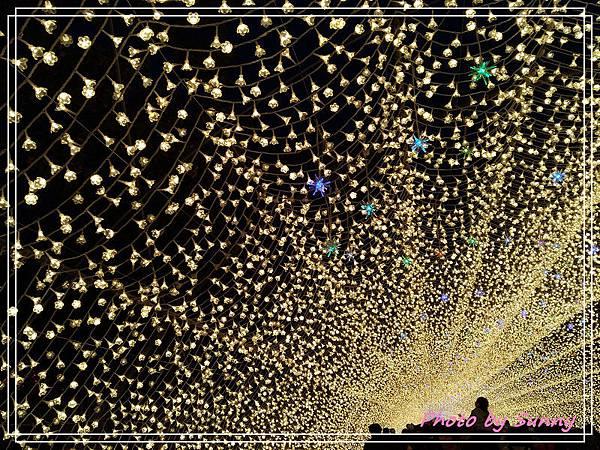 名花之里夜景2.jpg