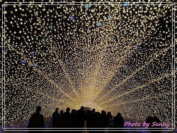 名花之里夜景4.jpg