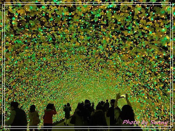 名花之里夜景13.jpg