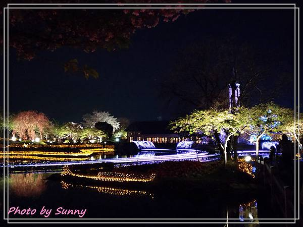 名花之里夜景16.jpg