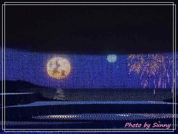 名花之里夜景26.jpg
