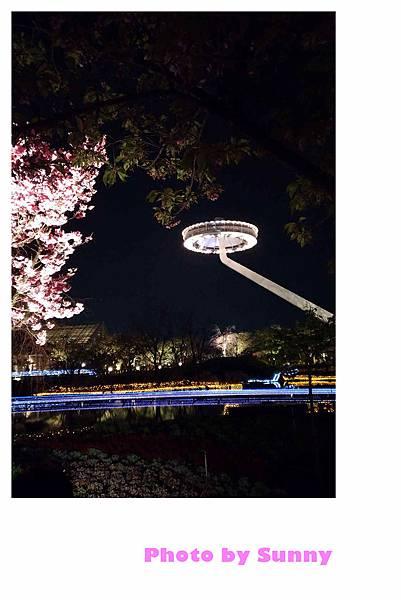 名花之里夜景33.jpg