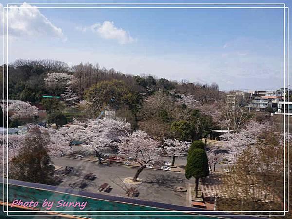 東山動植物園5.jpg