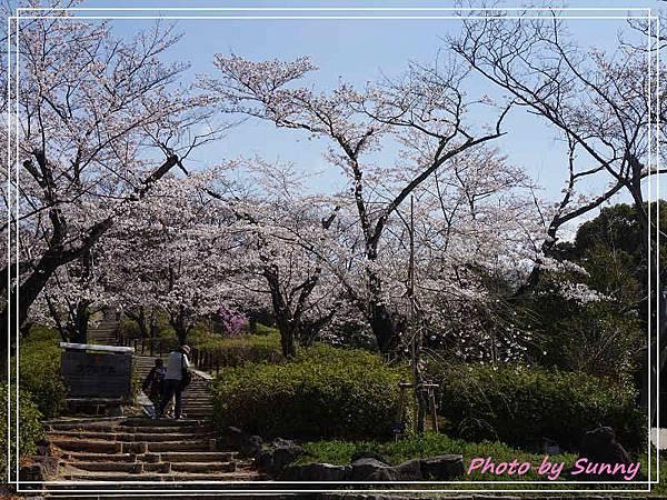 東山動植物園8.jpg