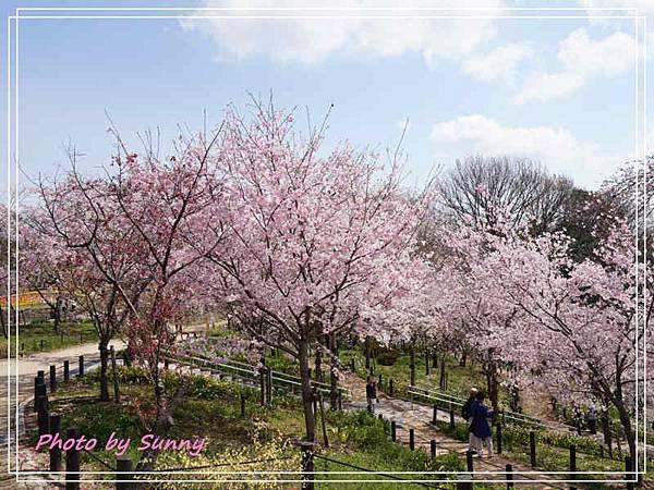 東山動植物園10.jpg