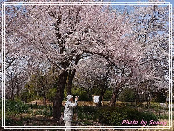 東山動植物園11.jpg